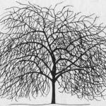 Formowanie i cięcie wiśni